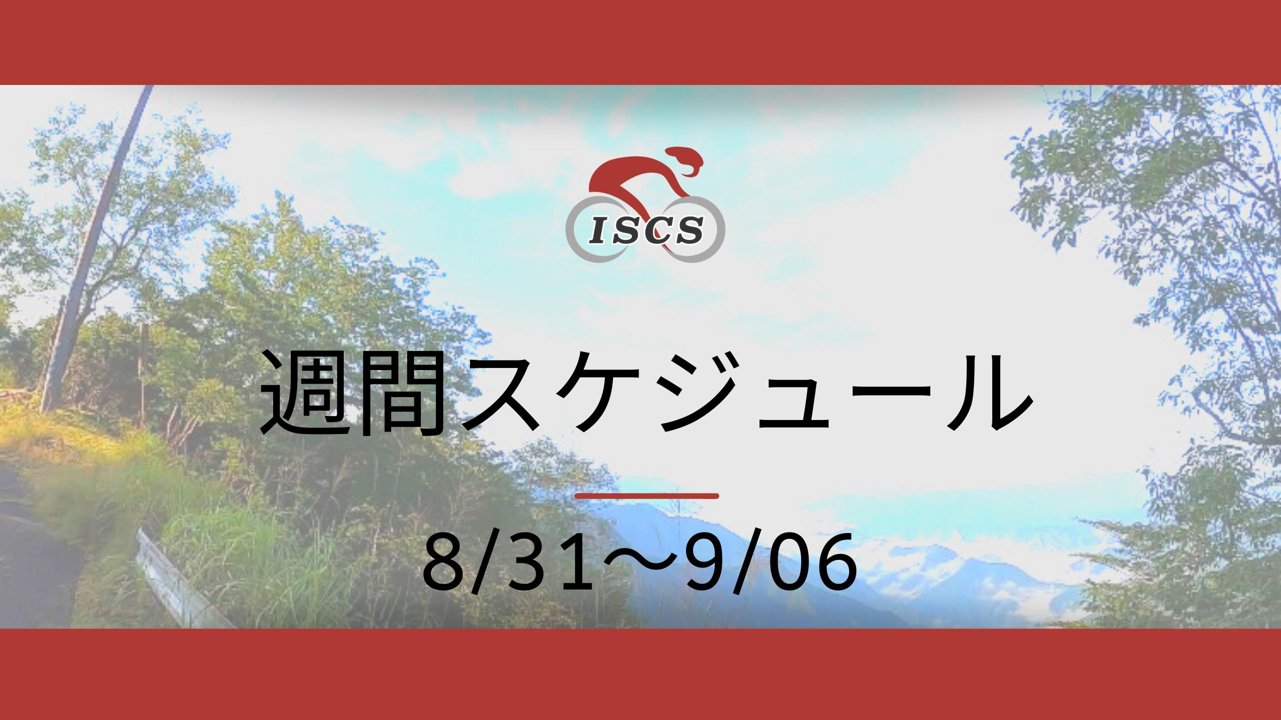 週間スケジュール8/31〜9/6